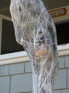 cocooned-spider-victim-b2