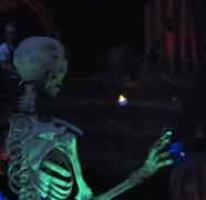 Nimble Fingered Skeletal Organist