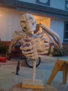 pvc-skeletons-b2