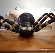 Spider & Spider Victim Plans