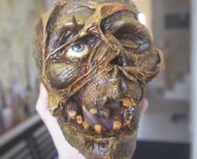 The Making Skulls Series