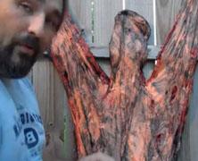 Stiltbeast Studios Human Pelt